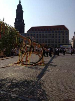 Innungsleben::Maibaumsetzen auf dem Dresdner Altmarkt 2014<br>(c) Ralf Wargel